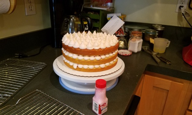 Create Your Own Cake Adventure