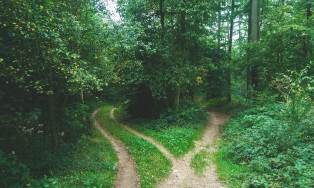 GlibFit 4.0 – The Slight Edge, Part 9