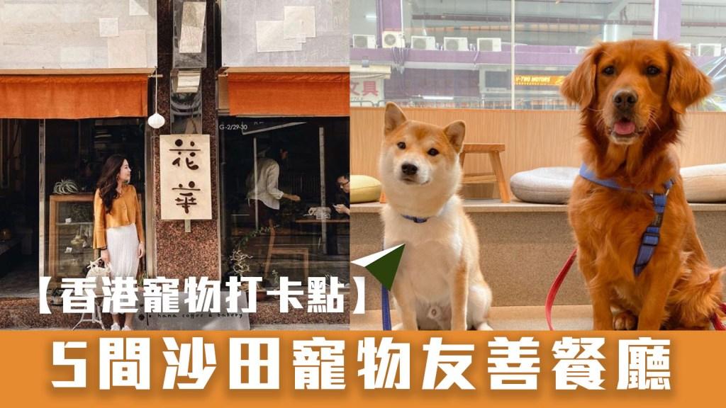 【香港寵物打卡點】5間沙田寵物友善餐廳
