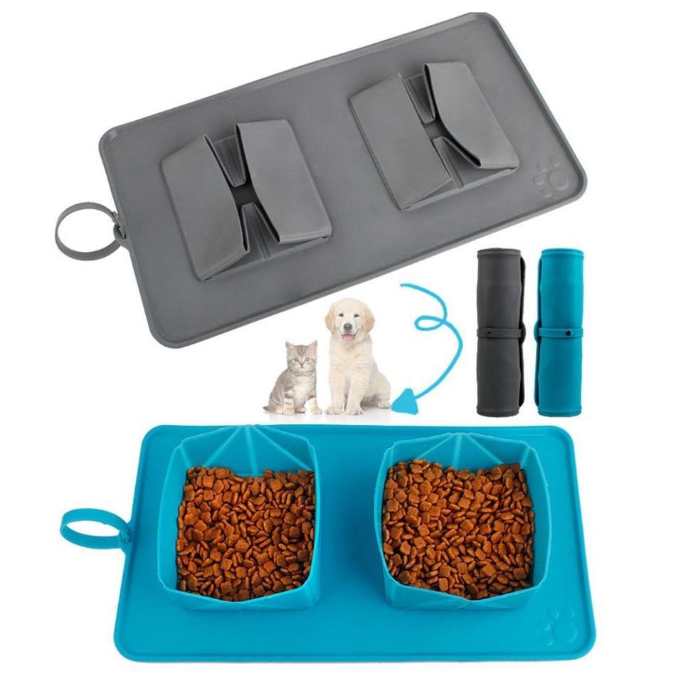 【香港露營】寵物露營 - 毛孩露營裝備清單