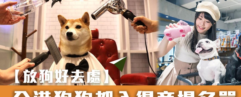 香港各區不少商場都是寵物友善,九龍狗商場有圓方、Mikiki,港島狗商場則有赤柱廣場、the pulse 等等,都歡迎攜同愛犬內進。部分狗狗商場不但有寵物專用設施、寵物用品租借服務,今次Glide分享的名單是分了兩類,等各位主人可以一文睇晒所有狗商場。