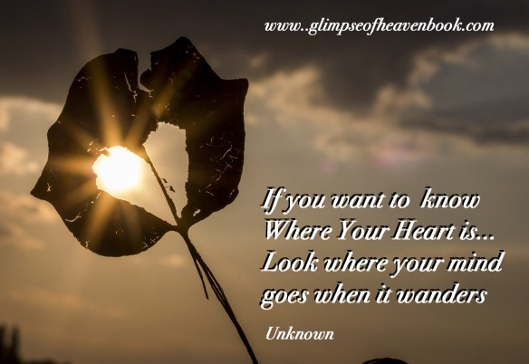 if-you-want-to-know-where-your-heart-us-sun-622740