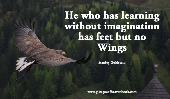 He who has learning without imagination has feet but no Wings Stanley Goldstein