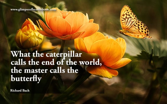 What the caterpillar calls the end of the world, the master calls the butterfly Richard Bach