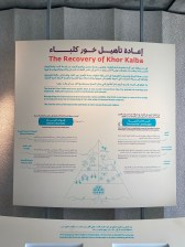The Recovery of Khor Kalba