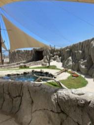Kingfisher Aviary