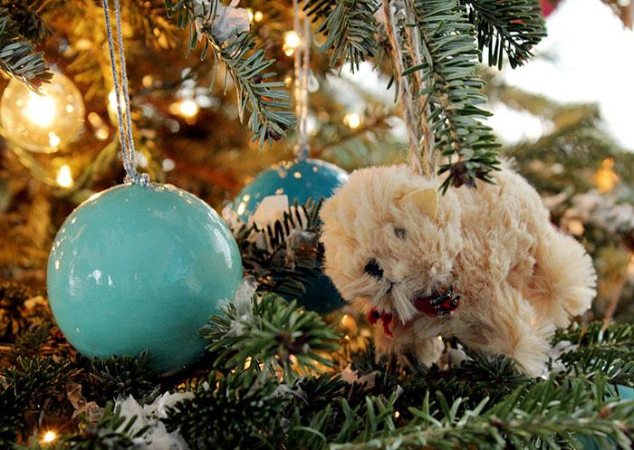ChristmasTree_dog
