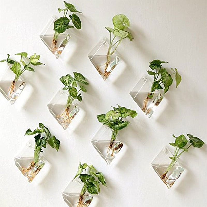 Mkono Hanging Wall Plant Terrarium Glass Planter on Amazon