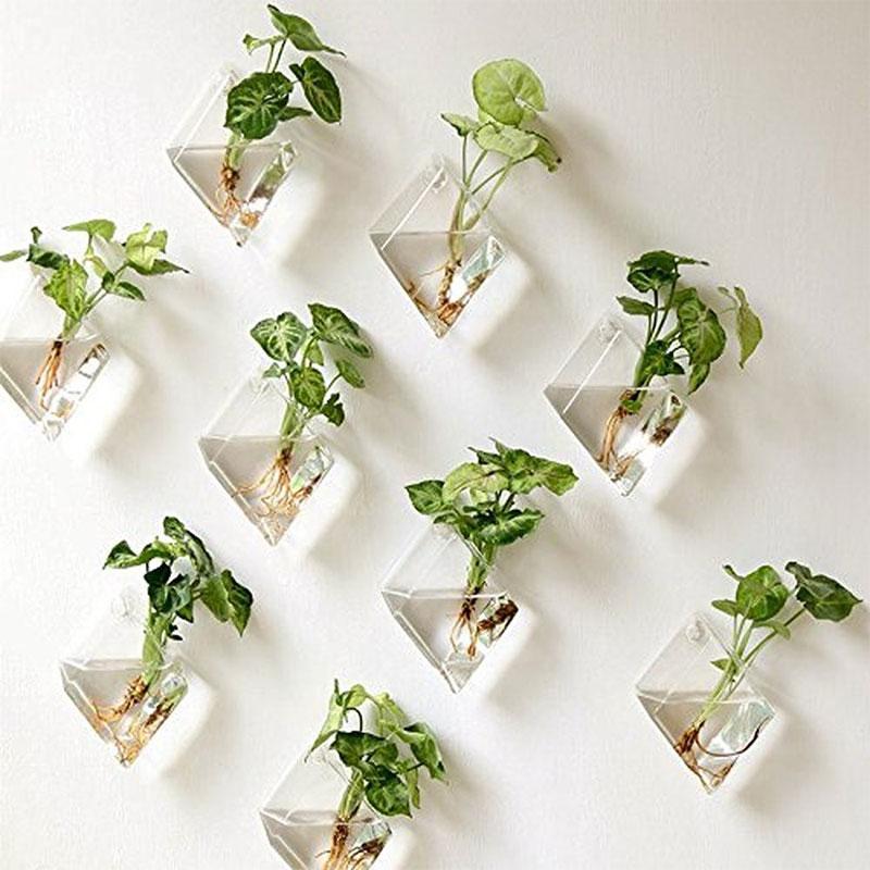 Mkono Hanging Wall Plant Terrarium Glass Planter on Amazon
