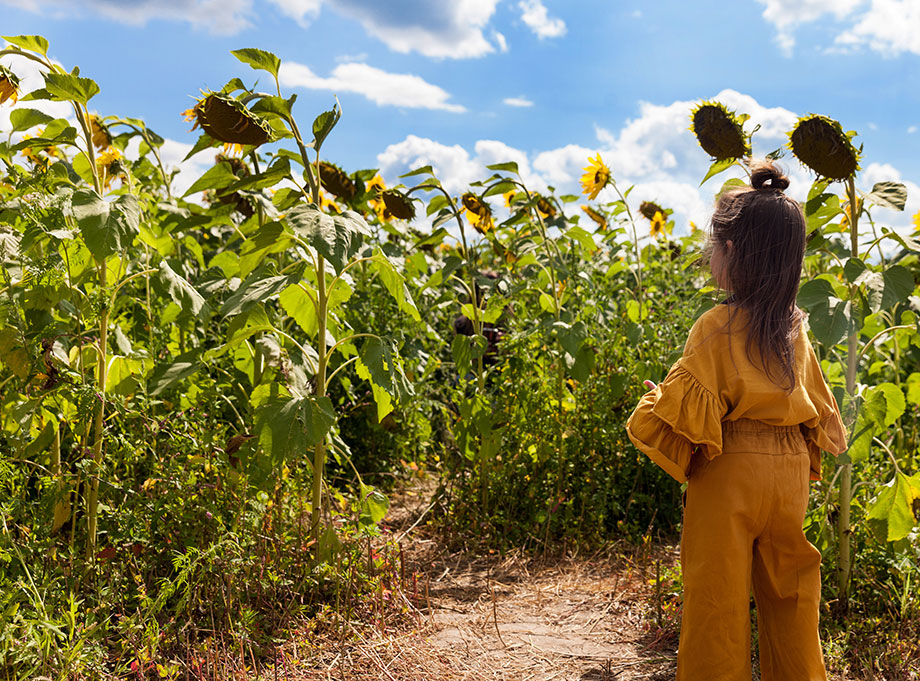 A little girl stands in a field of flowers for Burning Man.