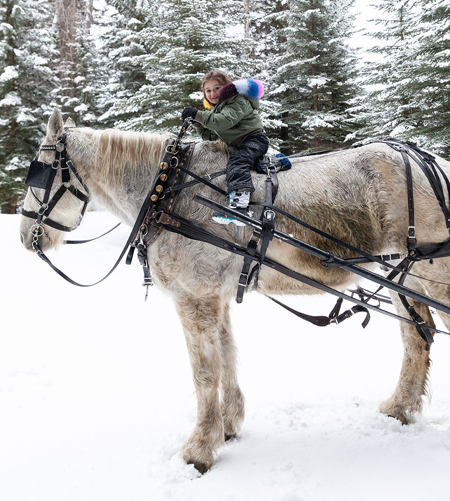 Zelda sits on a horse in Aspen, Colorado in this fun activity guide.