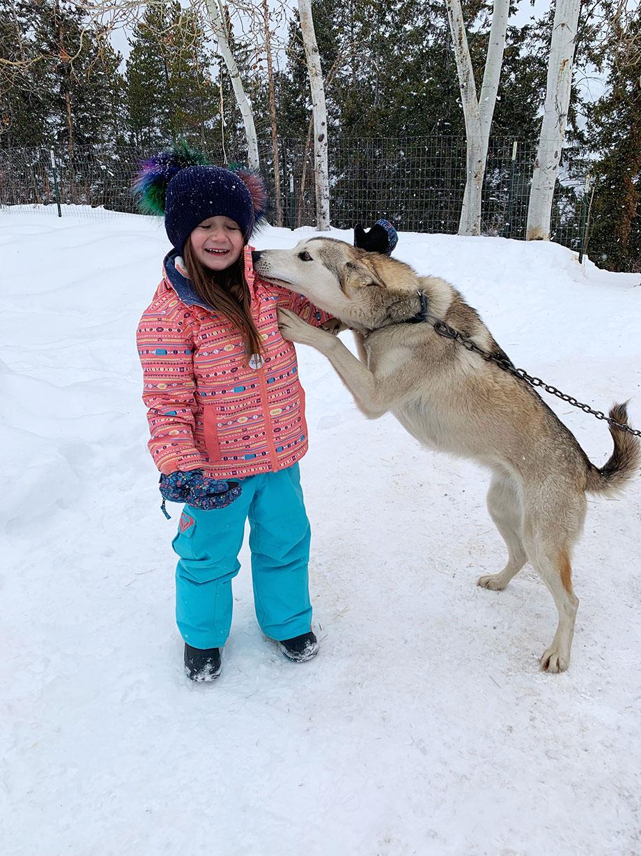 Zelda gets kisses from a sled dog in Aspen.