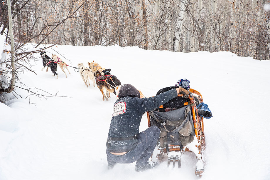 Where to go dog sledding in Aspen, Colorado.