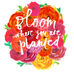bloom-where-you-are-planted-150x150