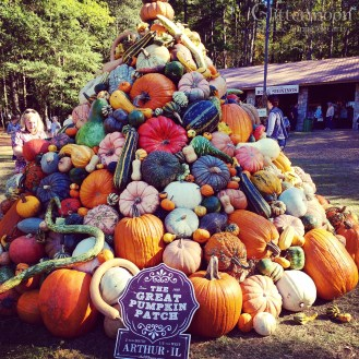 The Pumpkin Tower was fantastic this year.