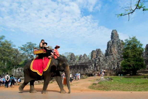 Angkor Wat Elephant Rides