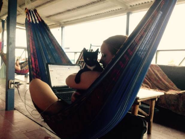 Hostels that have kittens are the best kind of hostels. - Bocas del Toro, Panama