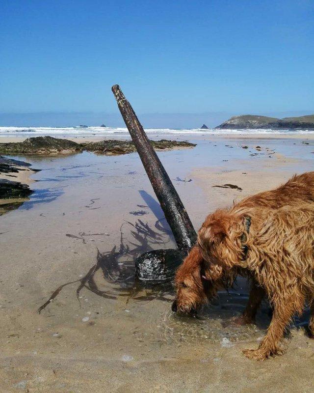 shipwreck booby's bay