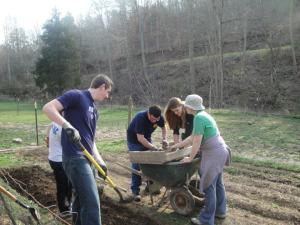 Working on a small organic farm in Appalachia with a group from Notre Dame