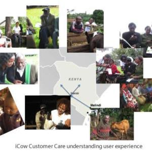 iCow Impact Study Results