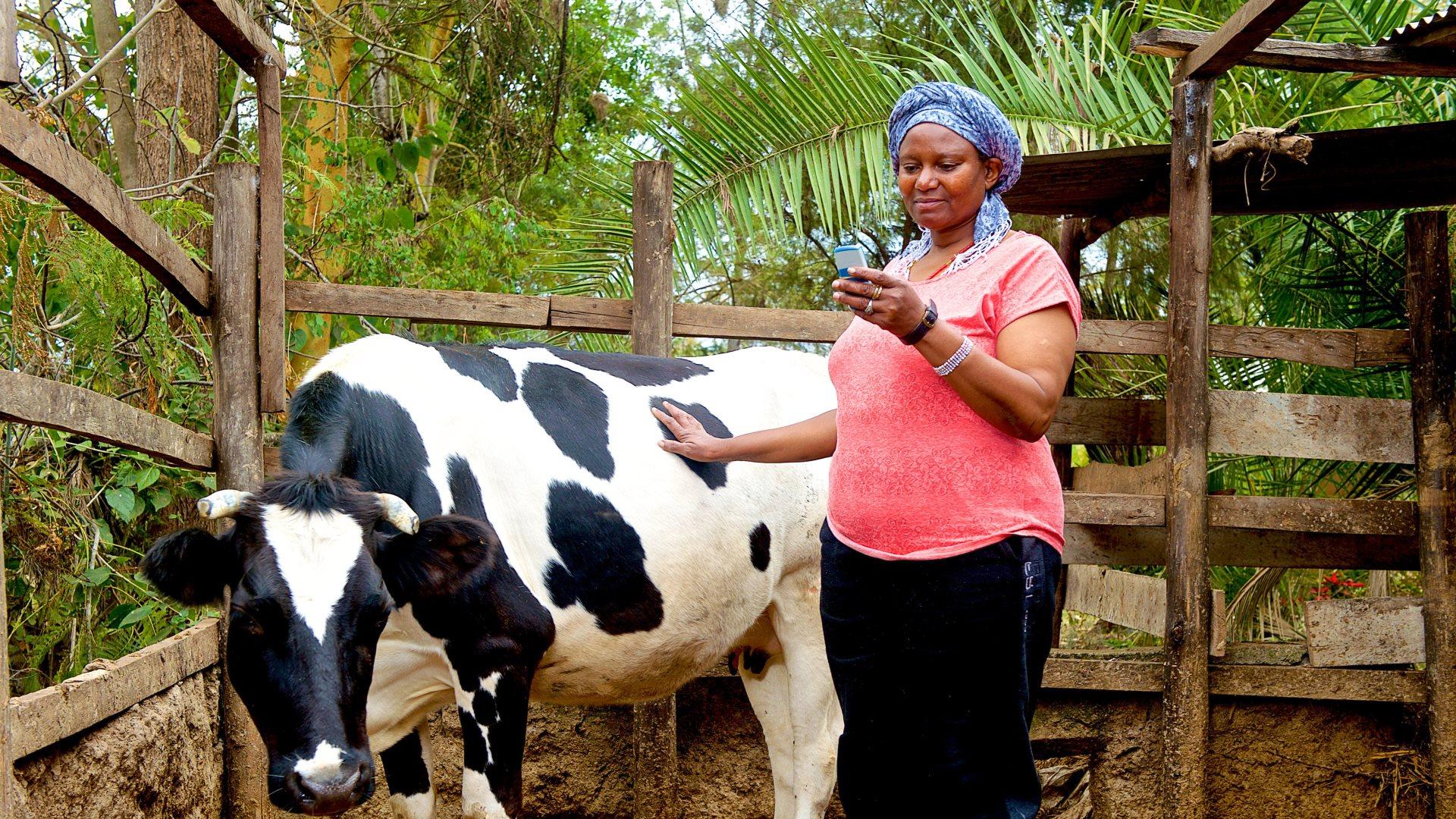 icow global elea-farmer