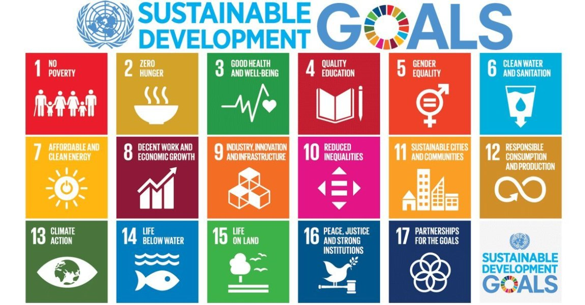 Image result for un sdg