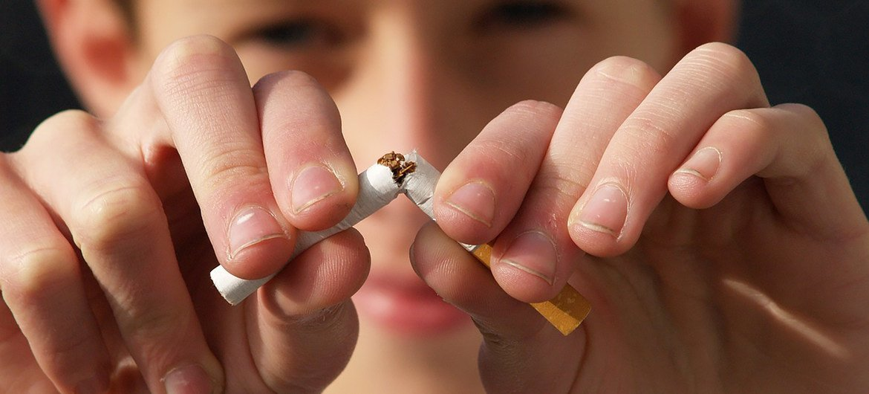 La Organización Mundial de la Salud  señala que el consumo de tabaco se cobra alrededor de ocho millones de vidas al año.