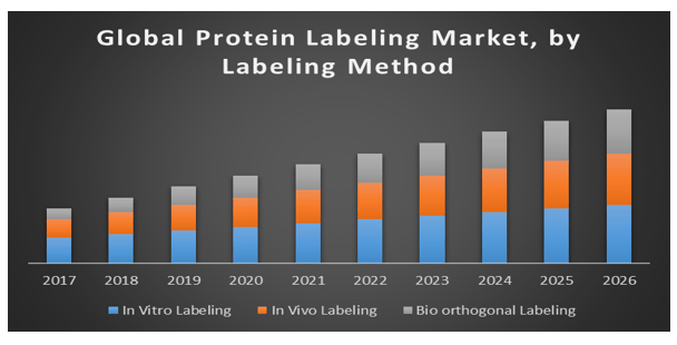 Global-protein-labeling-market