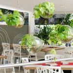 Amapola Restaurant