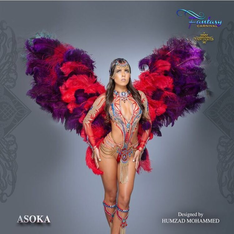 Asoka Fantasy Carnival 2017