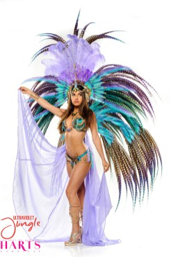 Owl-Harts Carnival