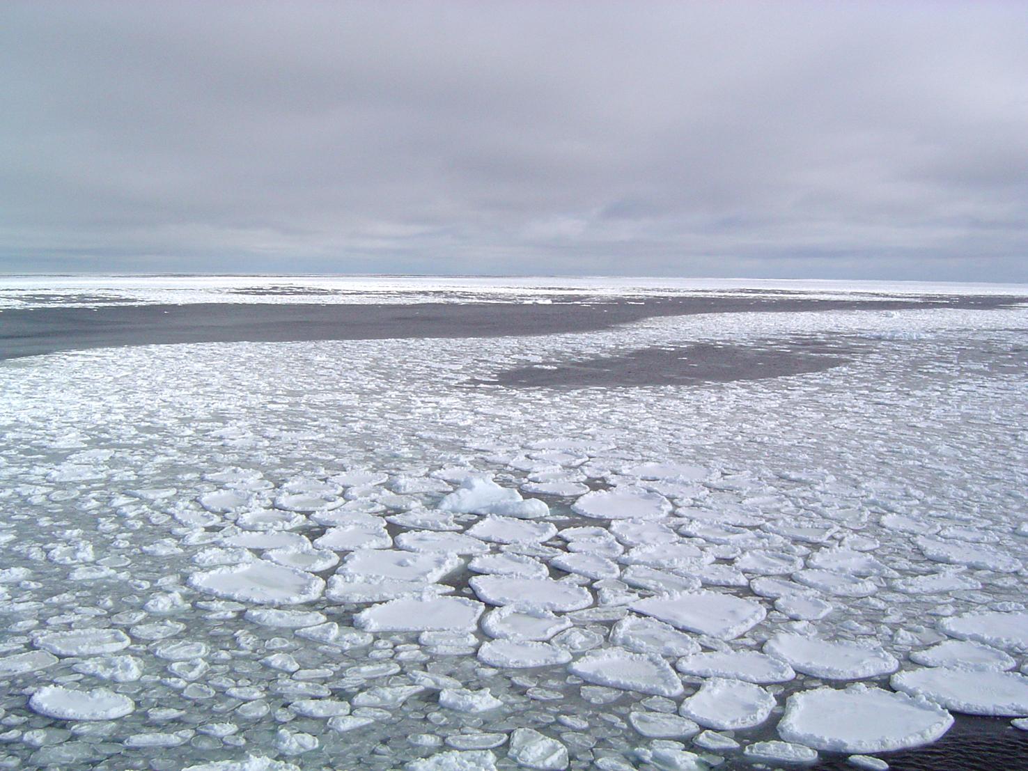 Fonte de l'Arctique : les vagues de froid auraient un impact moindre sur l'Europe du Nord