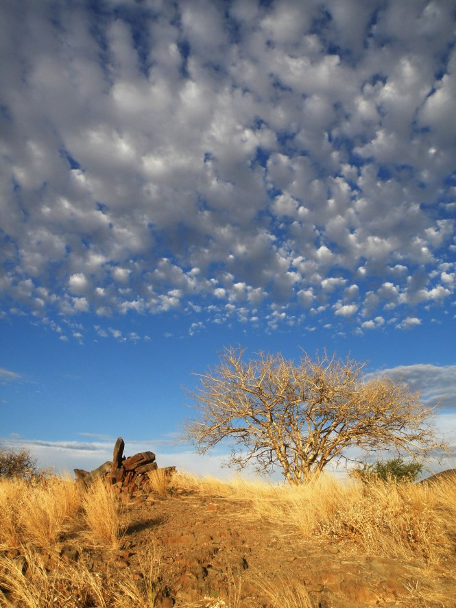 Clouds over Namibian brush