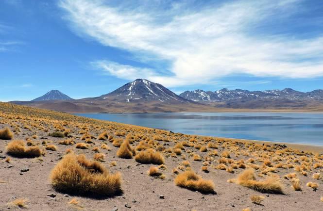 Altiplano Chile