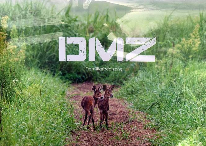 Our DMZ postcard
