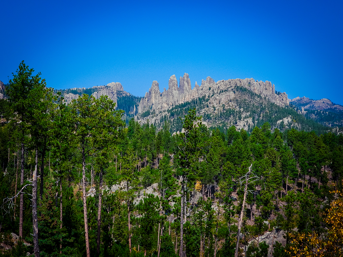 Custer State Park Needles Highway view
