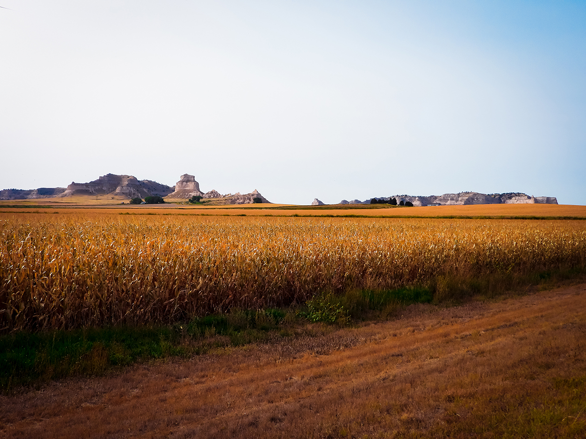 Road-tripping Nebraska landscape