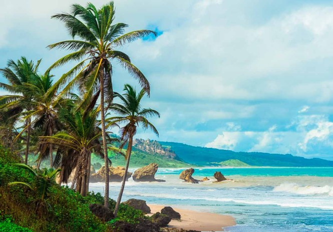 Bathsheba coast in Barbados