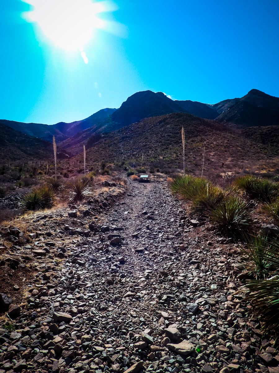 Trail head in Franklin Mountains