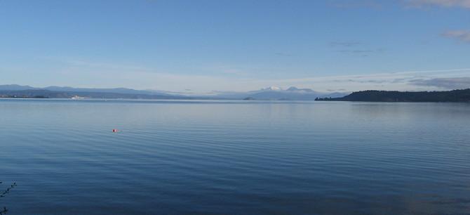 Morning walk around Taupo Lake