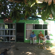 Toni's Guesthouse in Tonga: Local + Lime Green