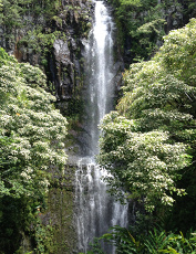 RoadtoHanawaterfall