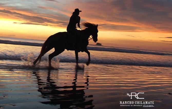 racinghorsesB