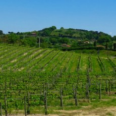 Tuscany Roadtrip – Taking the Wheel in Italy