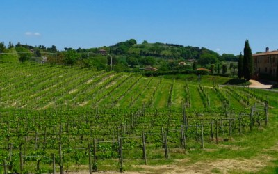 Tuscany Roadtrip – Taking the Wheel in Italy