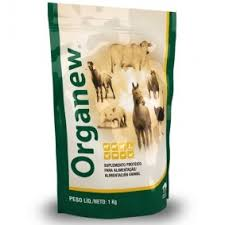 Organew Daily Probiotic