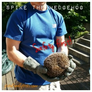 A Visit from Spike the Hedgehog