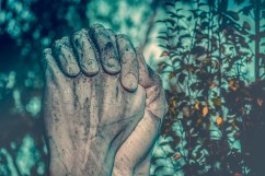 Farmer's hands in prayer