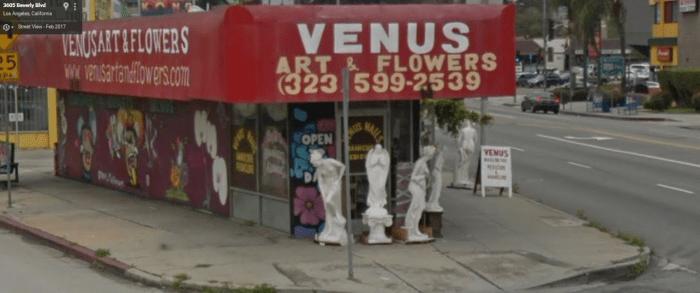 venus-flowers-sv.png