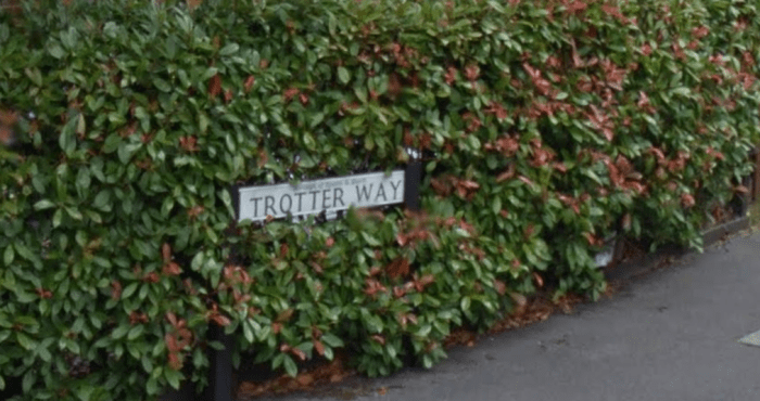 trotter-way.PNG